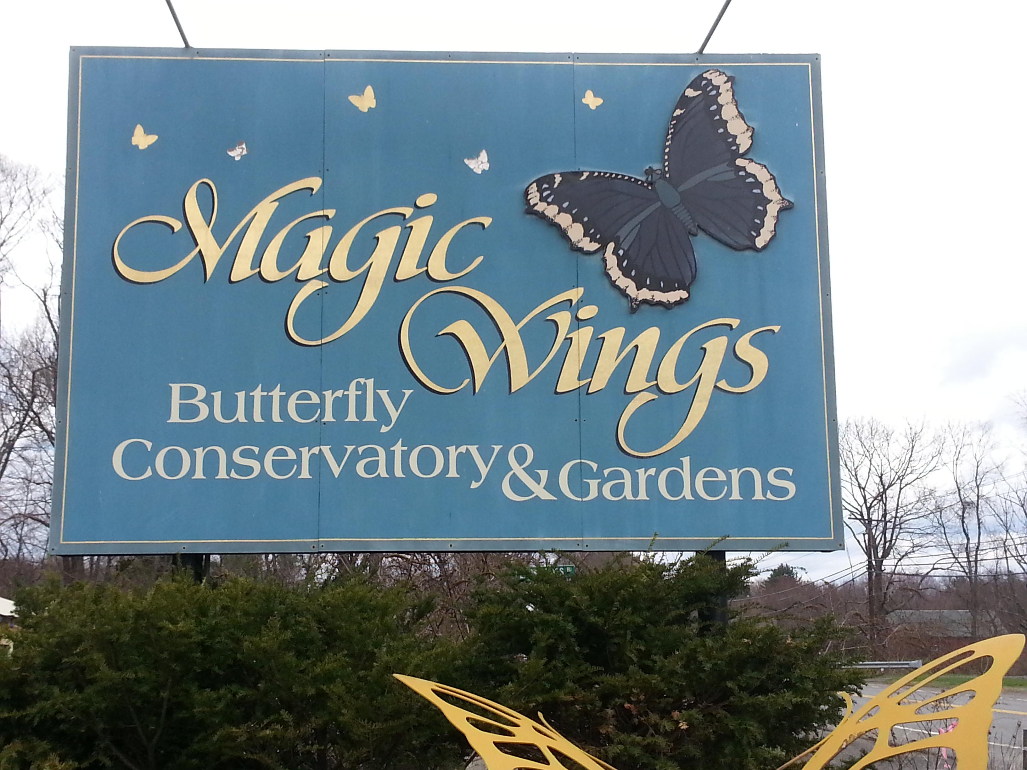 Magic Wings