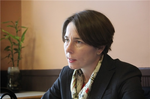 Maura Healey announced in October 2014 that she would run as a Democrat to succeed Martha Coakley as attorney general.