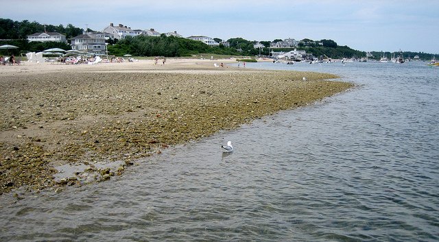 A beach on Cape Cod in August 2010.