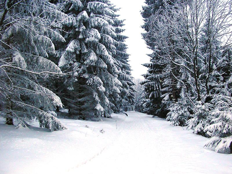 800px-Falk_Oberdorf_Wiehengebirge_Winter_Heidbrink