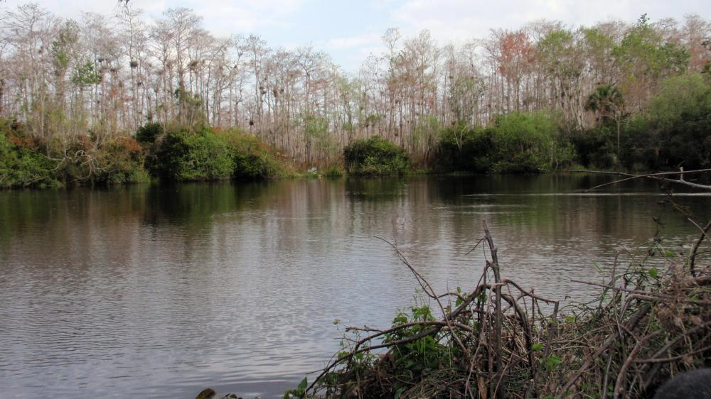 Drilling companies have new interest in southern Florida's Big Cypress preserve. The prospect of large-scale operations and possibly fracking worries environmentalists and residents.