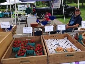 Ervin Meluleni of Coyote Hill Farm selling his crops at the Bernardston Farmers Market (Nancy Eve Cohen)