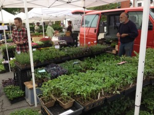 Rich Pascale  (on the right) has been selling crops at the Greenfield Farmer's Market for 40 years. (Nancy Eve Cohen)