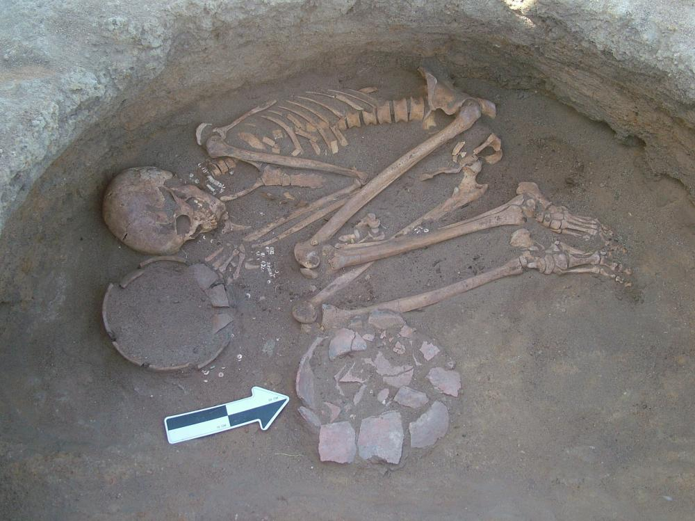 This young male, buried at a prehistoric site in Central Sudan, probably munched on the roots of a plant called purple nutsedge.