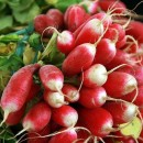 These Cherry Belle radishes grow superfast.