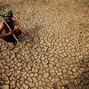 An Indian farmer sits today in his dried up land in Gauribidanur village, in southern India's Karnataka state. More than 750 people are died in a heat wave that has swept across the country.
