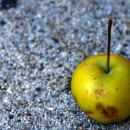 Tiny apple on sidewalk