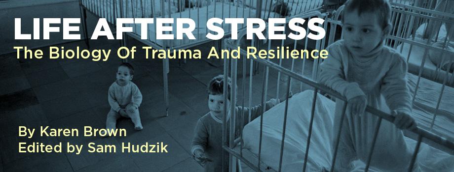 Life-after-stress-920x350